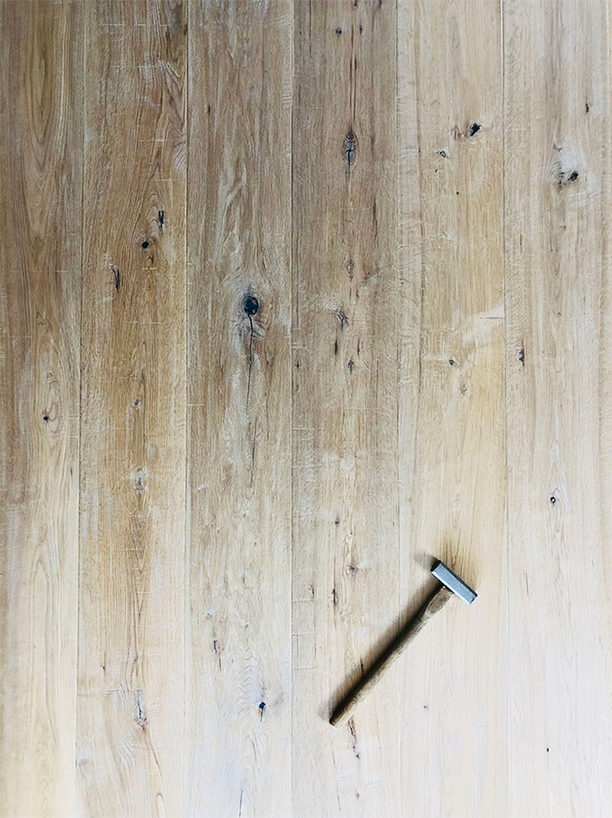ゲンノウのある床です。